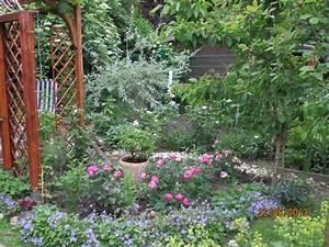 Rosenbeet Mit Stauden : rosenbeet mit stauden pflanzen f r nassen boden ~ Frokenaadalensverden.com Haus und Dekorationen