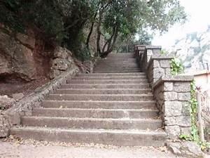 Revetement Escalier Exterieur : escalier ext rieur quel rev tement choisir ~ Premium-room.com Idées de Décoration