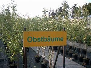 Dünger Für Obstbäume : obstb ume beerenobst blumenhof baumschule wilms ~ Michelbontemps.com Haus und Dekorationen