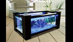 creative inspiration beautiful aquariums for home. HD wallpapers creative inspiration beautiful aquariums for home