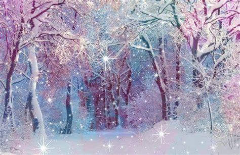 Enchanted forest backdrop Christmas tree background White