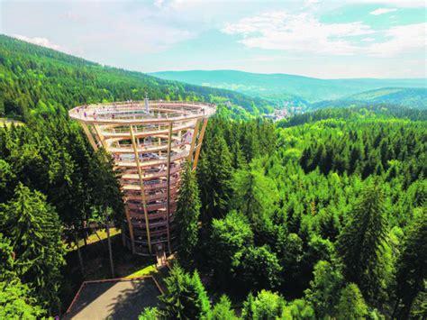 Pastaiga virs koku galotnēm arī Mežaparkā - Rīgā - nra.lv