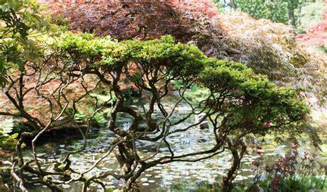 Japanischer Garten Franken by Fototagebuch Archive Rezepte Ein Topf Heimat
