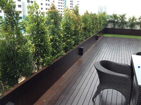 hongye timber decking solid timber deck singapore hong