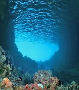 Sicily - underwater — Yacht Charter & Superyacht News