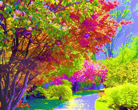 colorful trees painting background colorful background