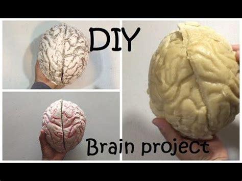 brain project diy brain  youtube