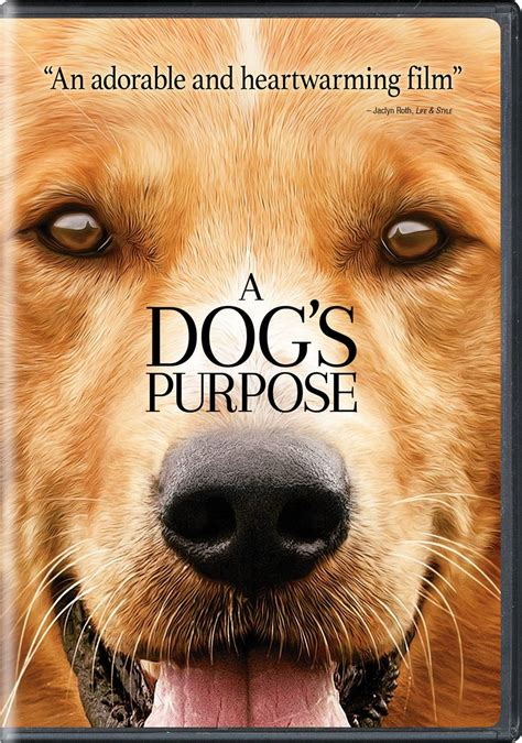 dogs purpose dvd release date