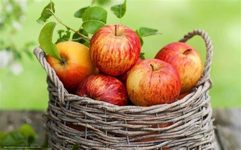 panier de basket de bureau tlcharger fond d 39 ecran pommes feuillage panier fruit