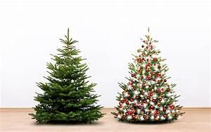 Weihnachtsbaum Mit Rosa Kugeln : fotos neujahr zwei fichten weihnachtsbaum kugeln 3840x2400 ~ Orissabook.com Haus und Dekorationen