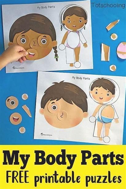 Parts Printable Kindergarten Puzzles Activities Learning Preschool