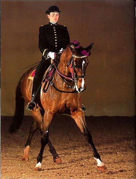 cadre noir de saumur cadre noir de saumur equestrian style