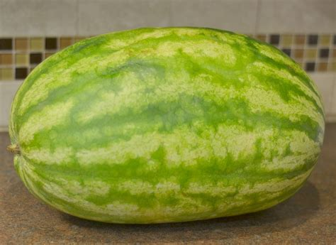 choose  perfect watermelon