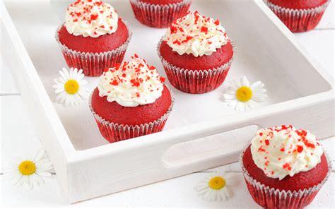 cuisine cupcake cupcakes food wallpaper 34047593 fanpop