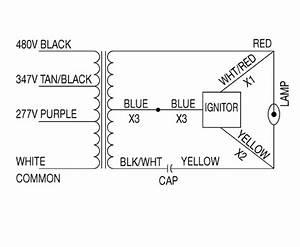 400 Watt Hps Ballast Wiring Diagram