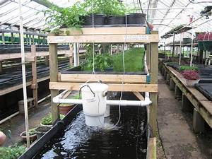 File Aquaponics At Growing Power  Milwaukee Jpg