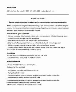 6 sample flight attendant resumes sample templates With entry level resume no experience