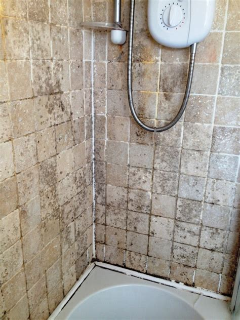 removing mould from travertine bathroom tiles