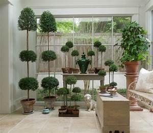 veranda et jardin d39hiver quelles plantes choisir With tapis chambre bébé avec plante a fleur d intérieur