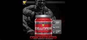 Bsn Cellmass Reviews