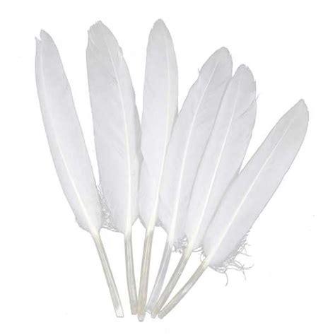 canap plume d oie plumes de chocotte d 39 oie 10 à 15 cm lot de 30