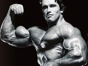 35 Best Biceps In History