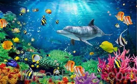 dophin coral colorful fish the sea 00008 floor decals 3d wallpap idecoroom