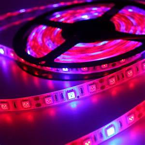 Led Grow Set : 5 meters set led flexible strip grow light 300leds adhesive dc12v led hydroponics flowering lamp ~ Buech-reservation.com Haus und Dekorationen