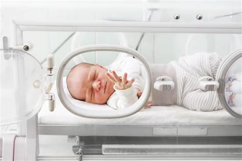 science  fighting brain injuries  babies rmit