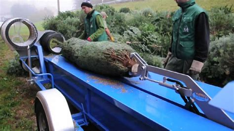 einnetzger 228 t weihnachtsbaum my blog