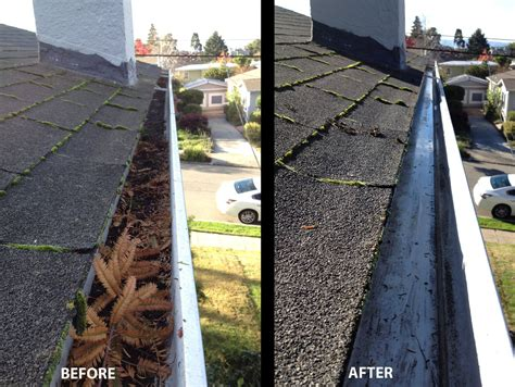 gutter cleaning melbourne  discount  peter james