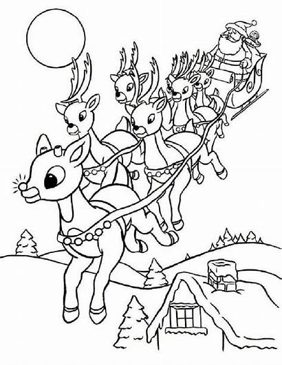 Reindeer Coloring Christmas Pages Santa Sleigh Rudolph