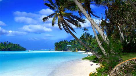 Beach Of Cayman Islands Tropical Landscape, Ocean Blue