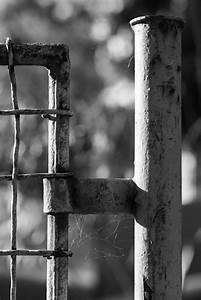 Free Images   Outdoor  Light  Fence  Barbed Wire  Black