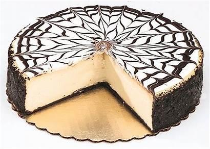 Cioccolato Bianco Cakes Torta Aries Cheesecake Chocolate