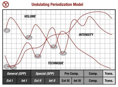 Undulating Periodization Template by A Simple Guide To Periodization For Strength