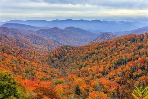 smoky mountain fall colors great smoky mountains national park 10 parks with