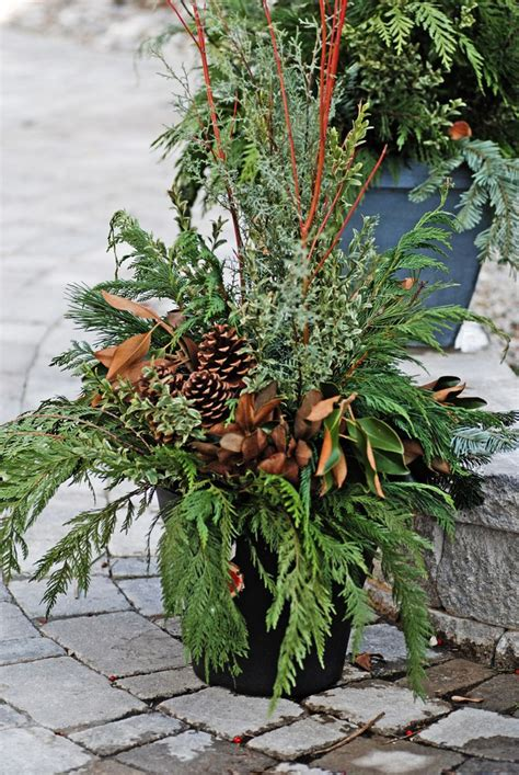 35 best images about christmas greenery on pinterest