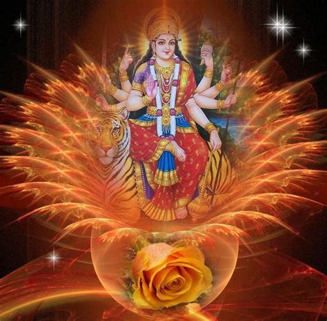 Möbel Auf Maß by 1000 Images About Ma Lakshmi On Of