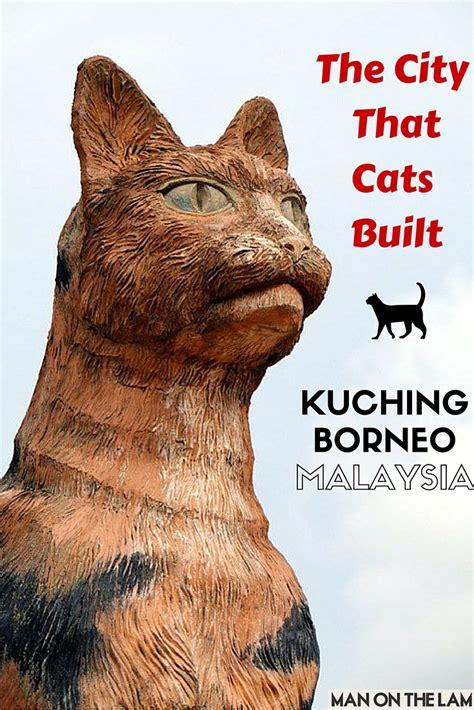 cat city kuching malaysia  city  cats built