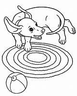 Coloring Dachshund Dog Puppy Bing Weiner Colouring Kolorowanki Jamniki Puppies Playful Printable Pobrania Popular Guardado Desde Bobby sketch template