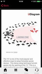 Decoypro - Goose Hunting Diagrams