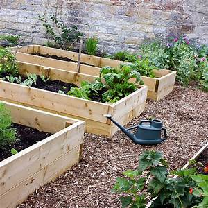 Have You Considered Raised Bed Gardening