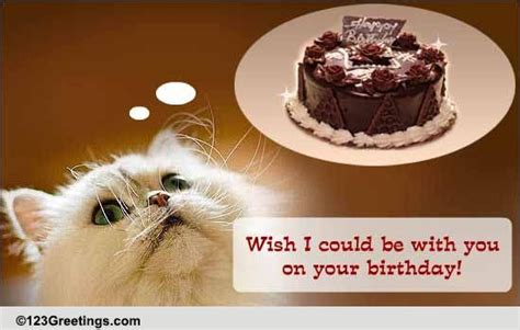 birthday    ecards greeting
