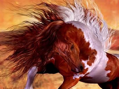 Horse Horses Wild Paint Wallpapers Animals Desktop