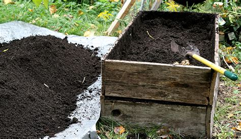 The Right Soil For Your Garden