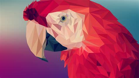 wallpaper digital art parrot polygon   art