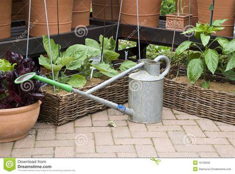 jardinage bo 238 te d arrosage et bacs de fleur photo libre