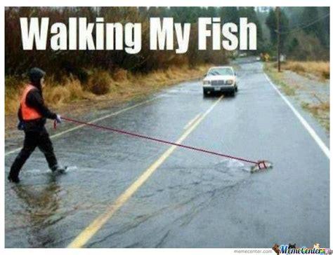 Fishing Meme - walking my fish meme just walking my fish haha pinterest fishing meme meme and humor