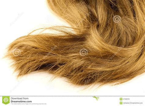Flaxen Hair by Beautiful Flaxen Hair Royalty Free Stock Image Image